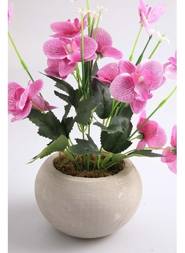 Kibrithane Çiçek Yapay Çiçek Beton Saksı Mini Lila Kumaş Orkide Kc00200812 Renkli